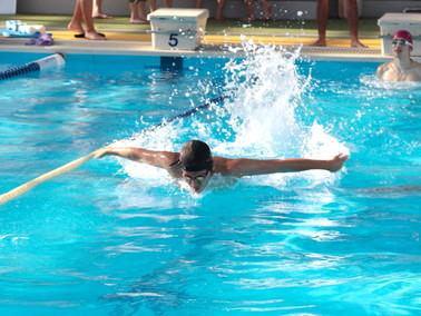 43水泳2
